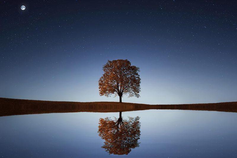 The Sacred Arts Of Reflection And Renewal
